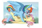 Flutterdash commission
