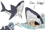 greatwhite shark scribble