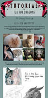 TUTORIAL: Fur for Dragons by SammyTorres