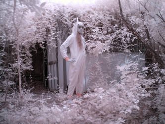 unicorn in the garden