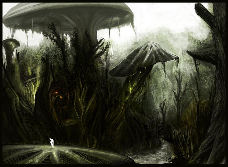 mushroom forest by mclovin216
