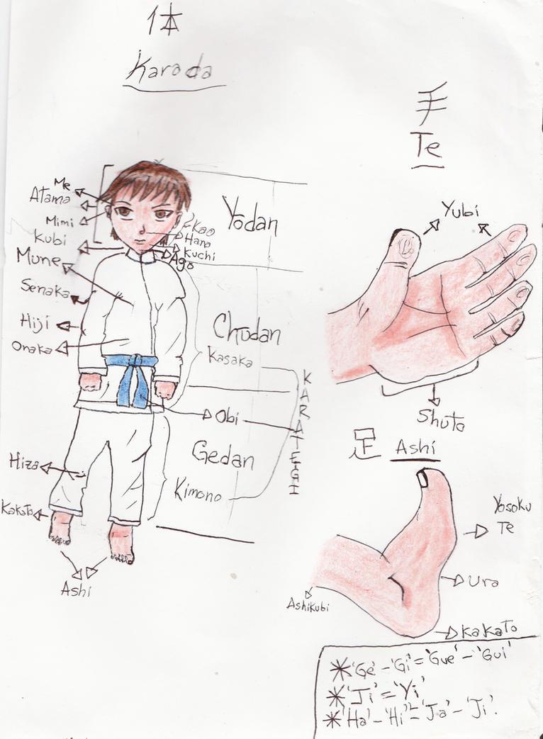 Cuerpo humano-nombre en japones-lenguaje de Karate by SonGohanBrief ...