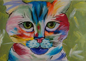 Cat by CatandtheFox
