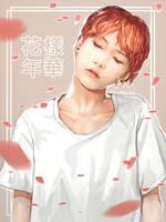 [BTS] SUGA - hwayang yeonhwa by Aureta