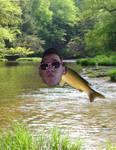 Mark the Fish