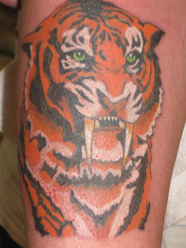 Saber Tooth Tiger Tattoo Sabre tooth tiger by dead14u2
