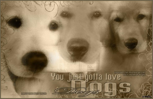love dogs by witchazel