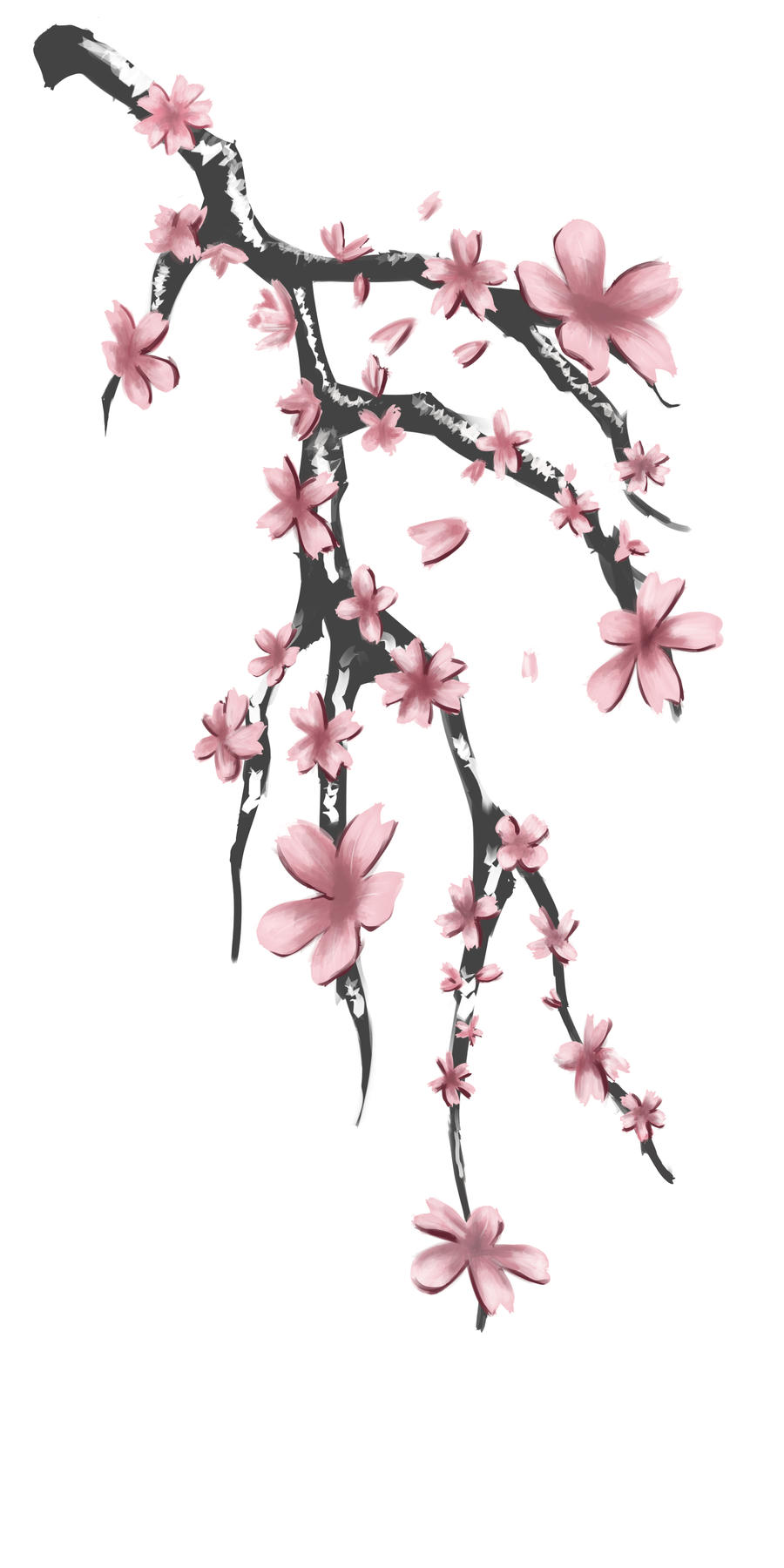 It is a graphic of Sweet Sakura Flower Drawing