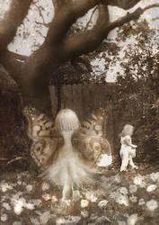 Fairy Papila 5