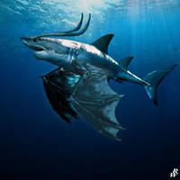 Sharkon by Dwarf4r