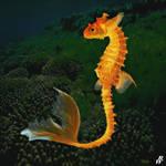 Golden fantail