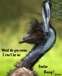 Easter bunny by Lenslady by Dwarf4r