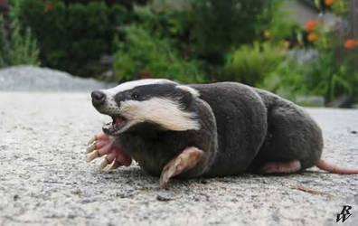 Badger mole by Dwarf4r