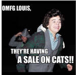 Harry Styles and Cats