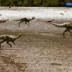 Qantassaurus And Timimus Stampede by 2195Razielim