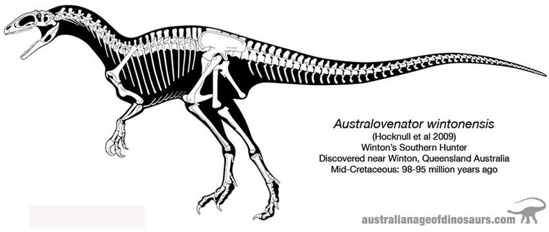 Australovenator Wintonensis Skeleton Drawing by 2195Razielim