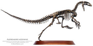 Australovenator Wintonensis Mounts 1