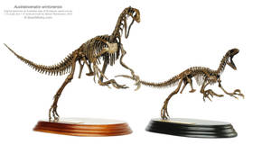 Australovenator Wintonensis Mounts 2