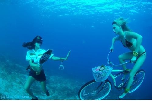 Stop Police by underwatermeister