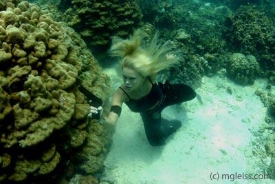 Underwater Killer by underwatermeister