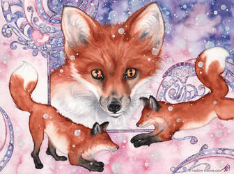 Winter Foxes by NadineThome