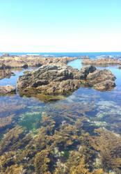 -Azure Shore-