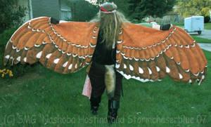 Dancing Wings by Nashoba-Hostina