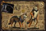 Nashoba Character Sheet