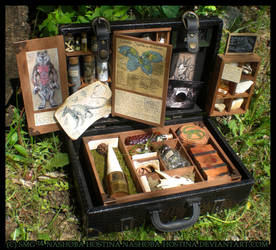Cryptozoology Specimen Case by Nashoba-Hostina