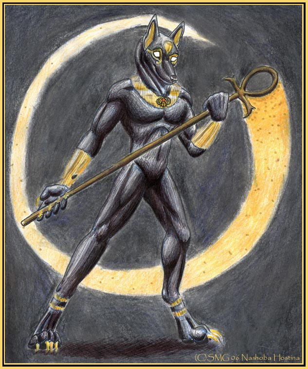 Anubis by Nashoba-Hostina