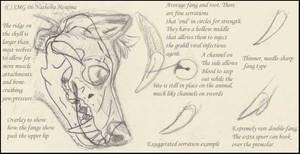 Grahll fang study by Nashoba-Hostina