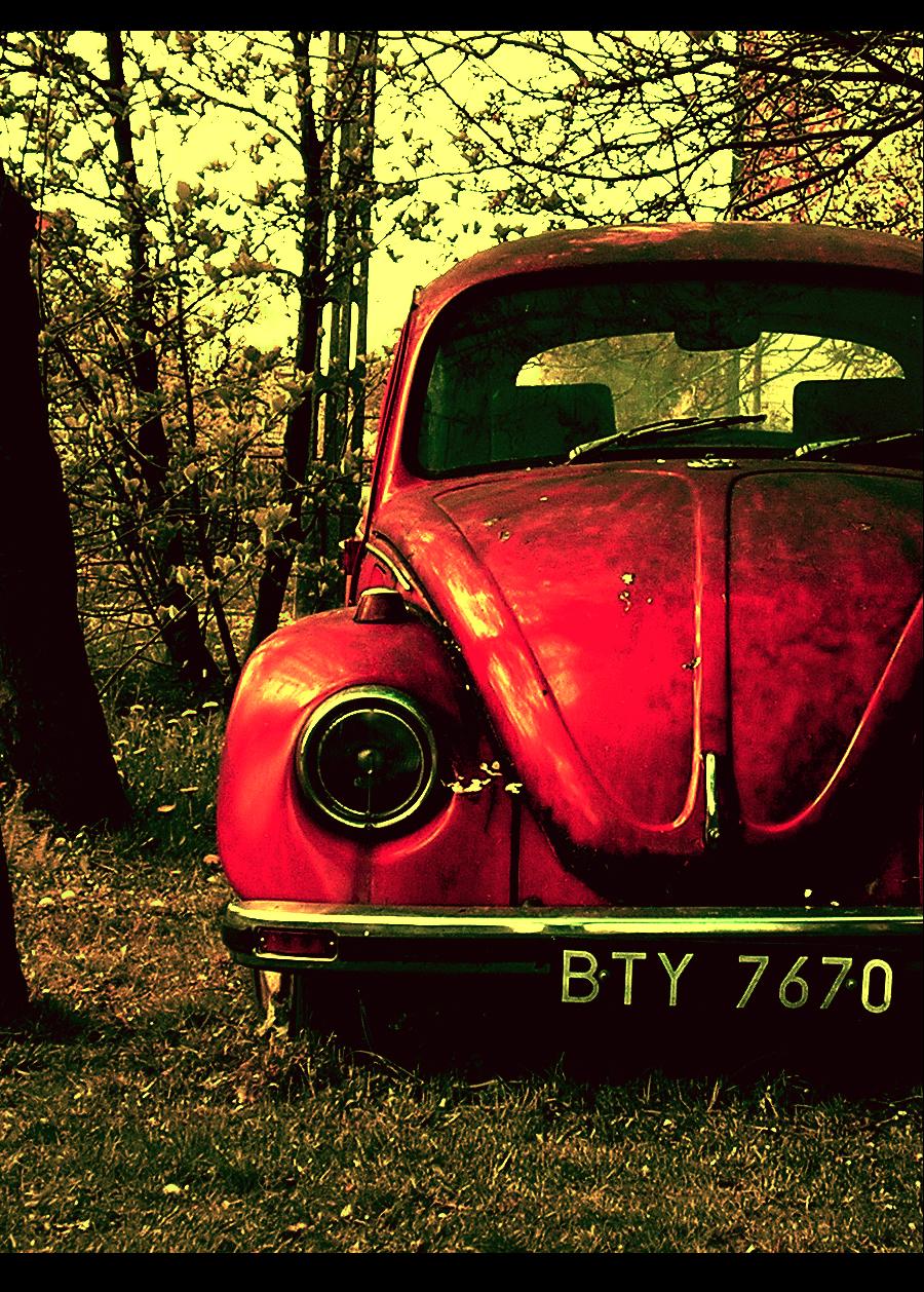 Beetle by ignitepressure