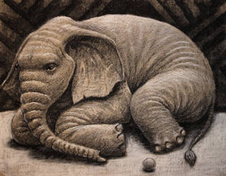 Resting Elephant by NingerGinjaaahh