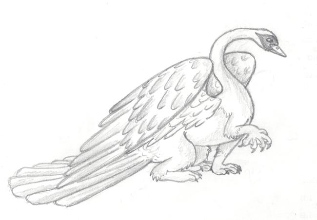 Swan gryphon by Kalyandra