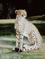 Crowned Regal - Oil painting by stevegoad