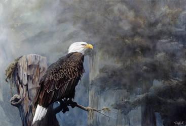 Freedom Haze-Oil Painting by stevegoad