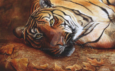 Bengal Tiger Oil Painting