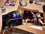 Posters - Customer Showcase by stevegoad