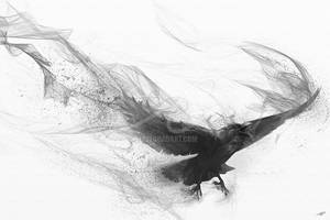 Raven's Flight by stevegoad