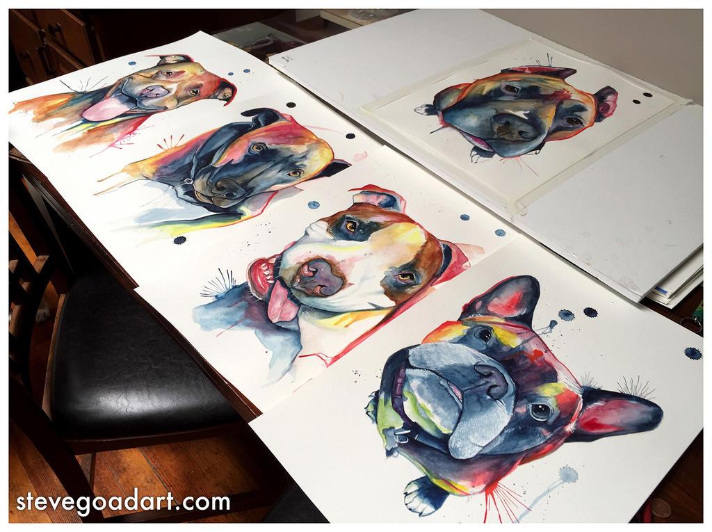 Watercolor Pet Portraits by stevegoad