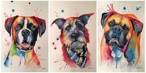 Whimsical Watercolor Pet Portraits