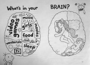 What's in your... BRAIN?