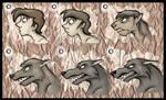 Werewolf Stages