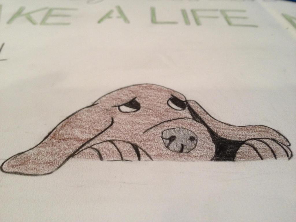 Sad Dog Drawing 2 by Chibi-D9000
