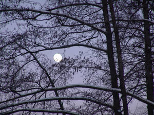 The moon on a wintery evening