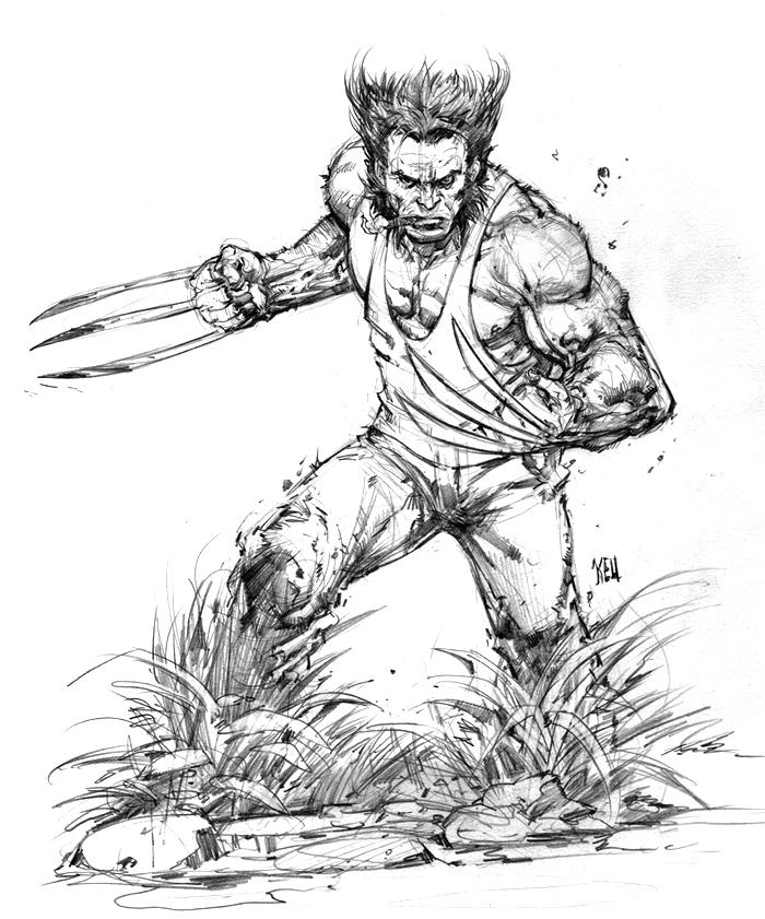 Wolverine by keucha