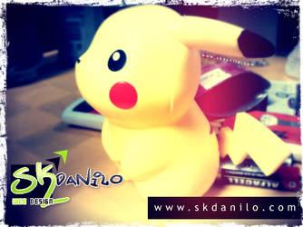 Pokemon Fotografia Em Macro By Skdanilo