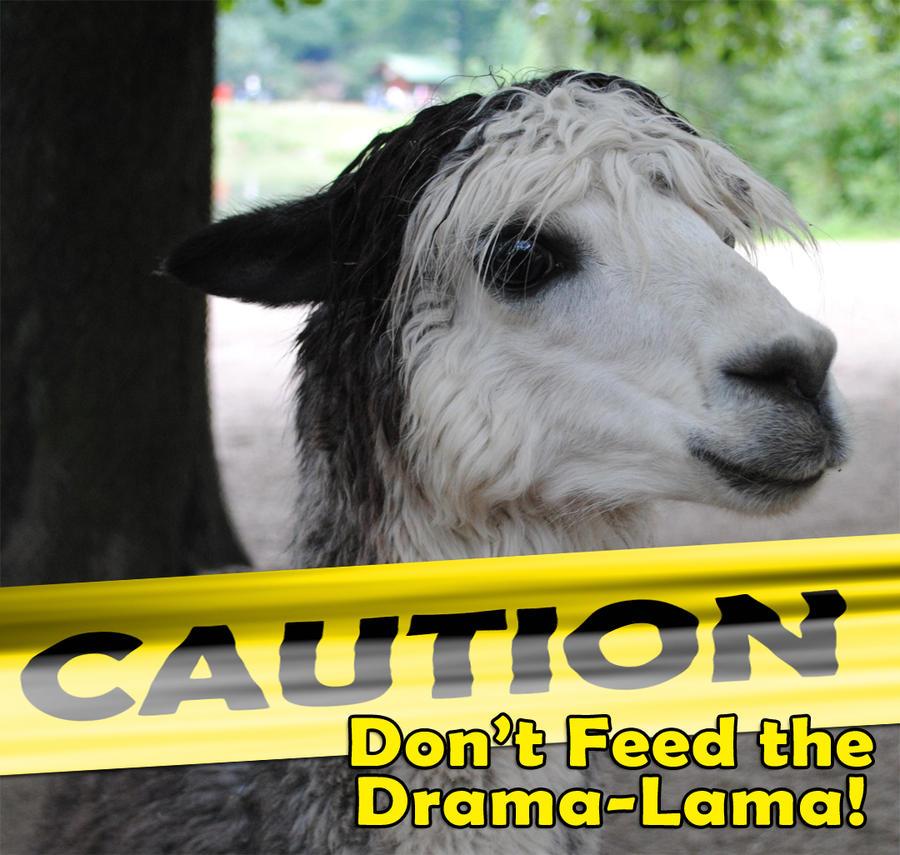 drama_lama_by_phaetalon-d53ibp4.jpg