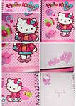 My Hello Kitty's Notebook
