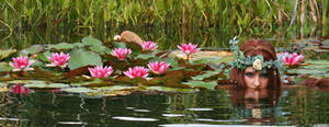 Water Lilies 03